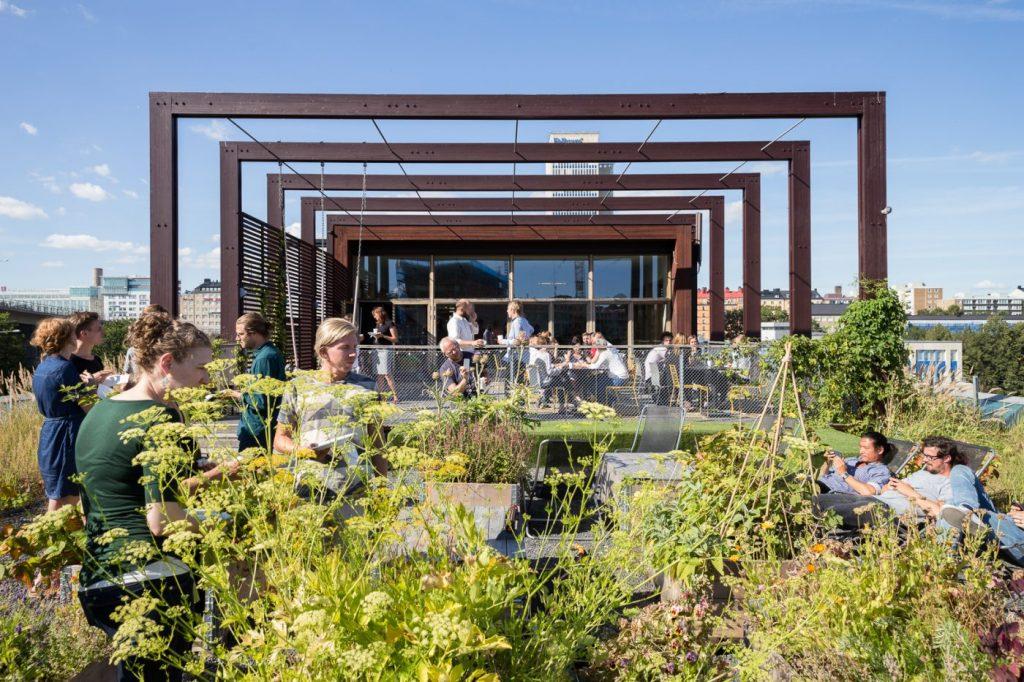 White Arkitekter office - green roof